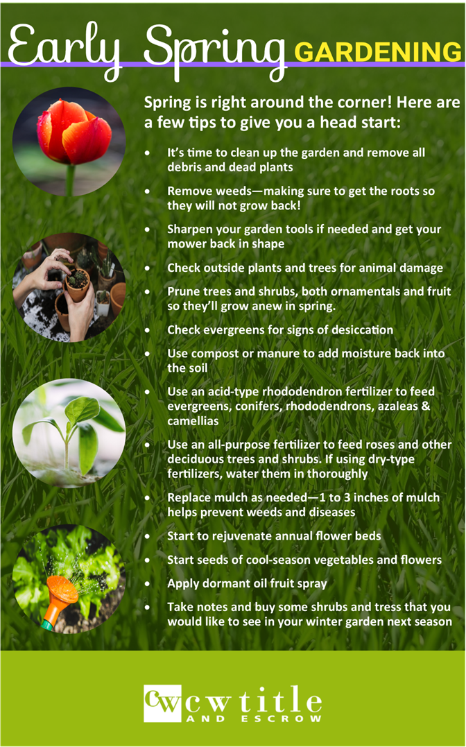 Great Early Spring Gardening Tips